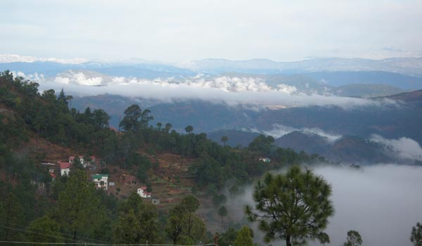 Vimoksha Resorts, Ranikhet